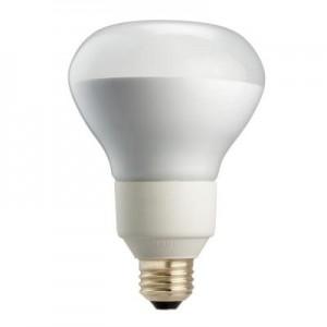 R 30 Bulb
